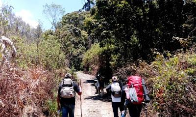 trek pendakian gunung lawu