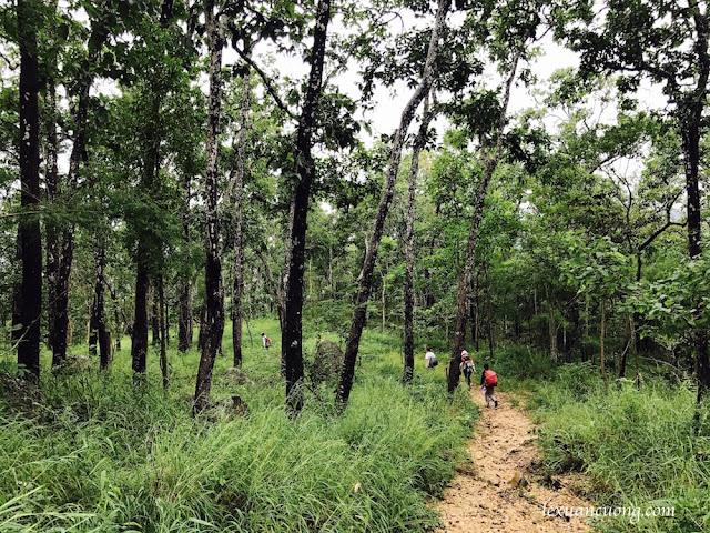Trekking%2BTa%2BNang%2BPhan%2BDung%2B19 - Cung đường trekking Tà Năng - Phan Dũng ngày trở lại, mùa mưa 2016