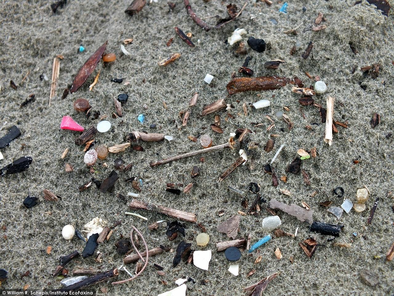 Areia repleta de microplástico na praia do Gonzaga, em Santos. Crédito: William R. Schepis/Instituto EcoFaxina