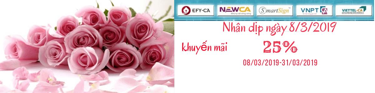 Hướng dẫn cài đặt chữ ký số EFY CA mới nhất - CKSVINA
