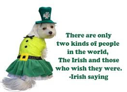 Happy St Patricks Day 2016 Greetings