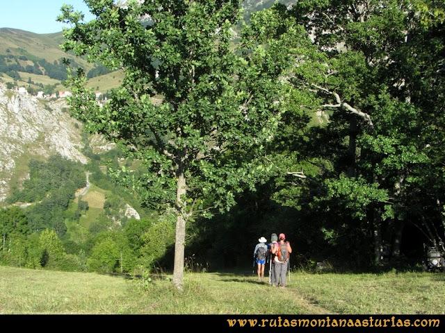 Ruta Peña Castil y Cueva del Hielo: Antiguo sendero de Pandébano a los Invernales del Texu