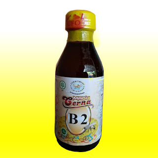 obat asam lambung tinggi, madu cerna untuk asam lambung