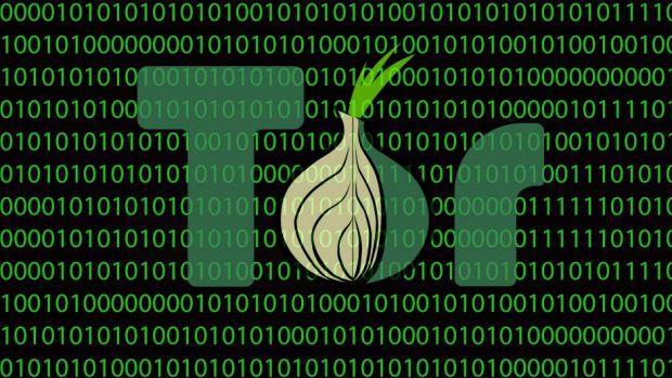 Script chạy Tor Browser Kali Linux