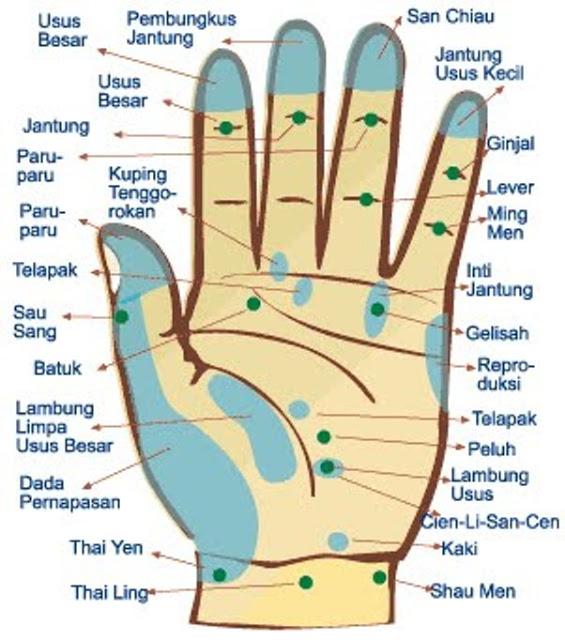 Menyembuhkan Sakit dengan Refleksi Tangan