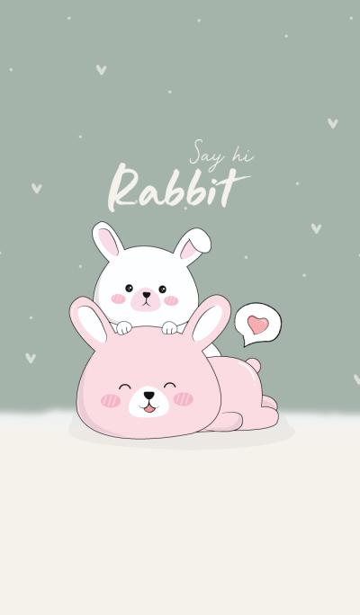 Say hi! Rabbit.