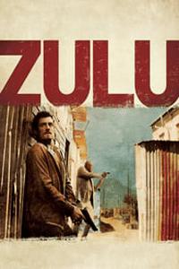 Zulu (2013) Movie (Dual Audio) (Hindi-English) 720p BluRay ESUBS