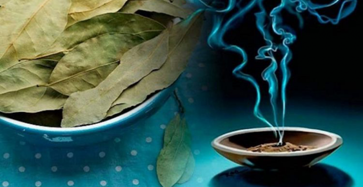 Burn Laurel Leaves At Home, It's Great For Your Health