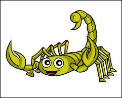 Scorpion sympa