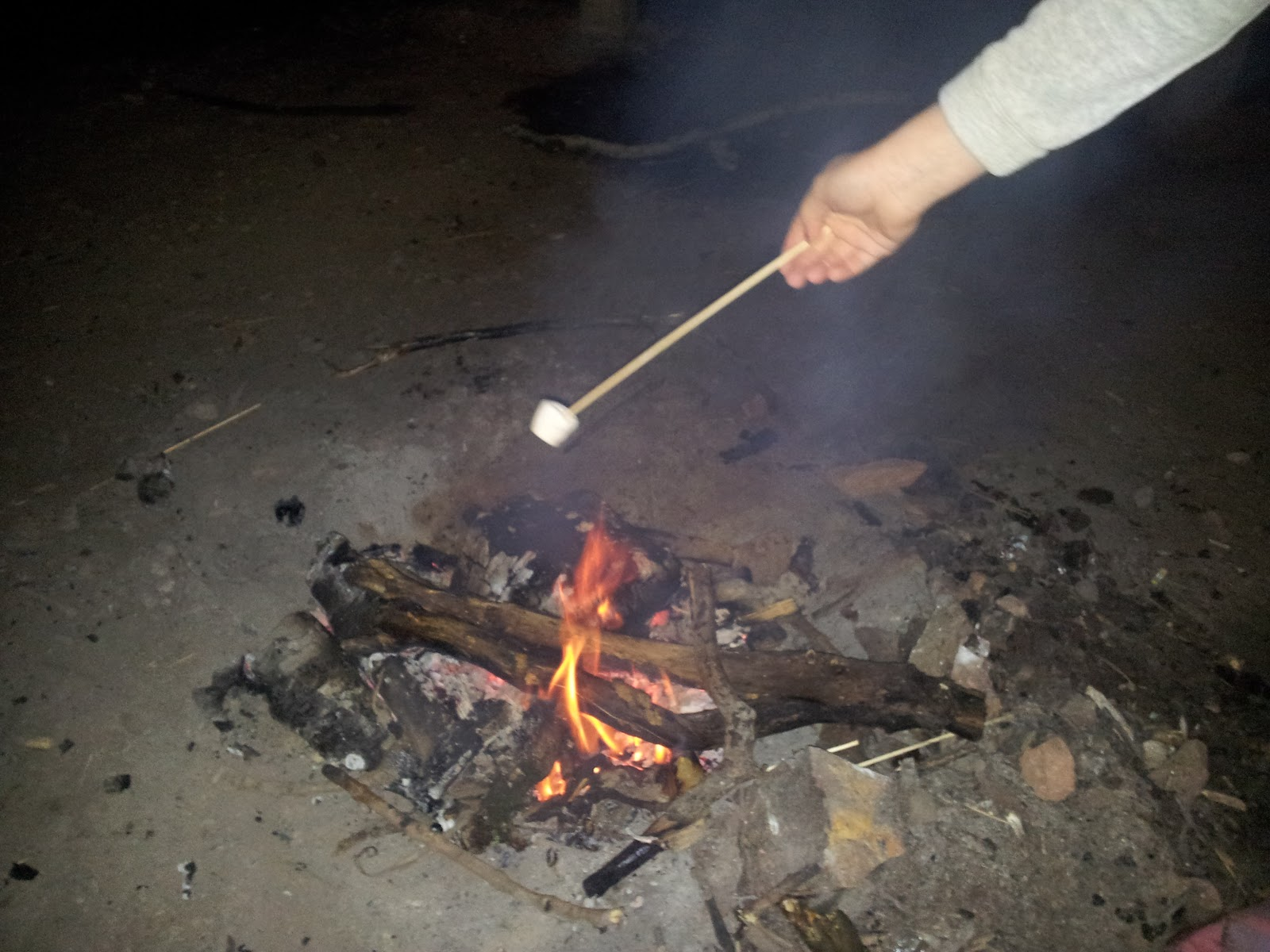 New Years Woods soup fire toast marshmallow