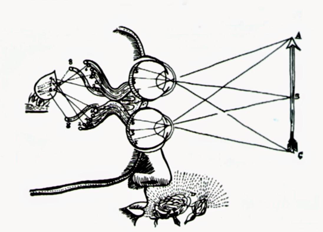 que inventos tecnologicos existian durante la colonia