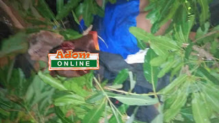 Angry Residents Shoot Dead 3 Suspected Robbers in Broad Daylight (Photos)