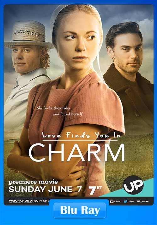 Love Finds You In Charm 2015 480p BluRay 300MB x264 Poster