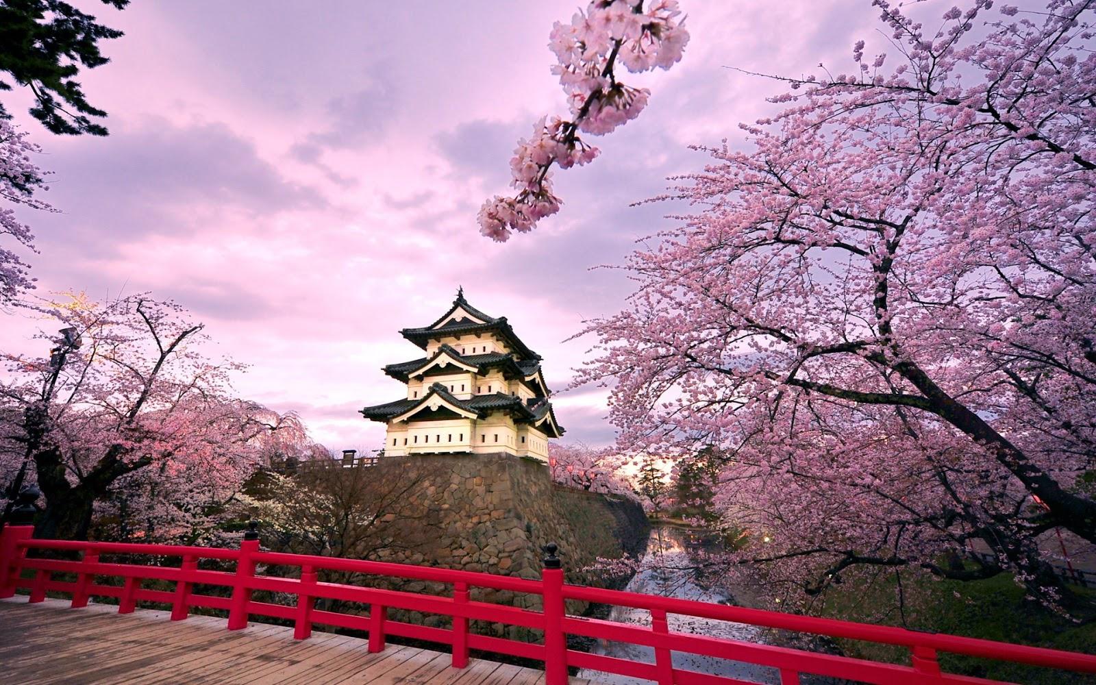 30 Frases Japonesas Con Su Significado Para Entender Su