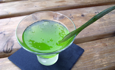 aloe vera juice, aloe vera juice benefits, aloe vera juice health benefits, aloe vera juice nutrition facts, aloe vera juice uses, health benefits,