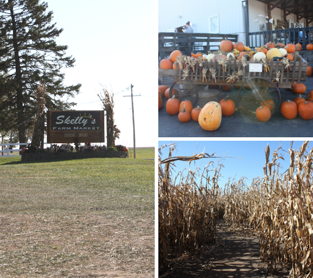 Harvest Fun, Two Corn Mazes and More at Skelly's Farm Market in Janesville, Wisconsin