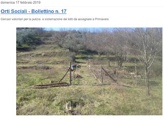 https://campagnano-rap.blogspot.com/2019/02/orti-sociali-bollettino-n-17.html