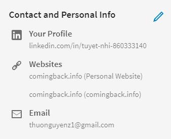 Kết quả sau khi đặt link trên Linkedin qua Profile