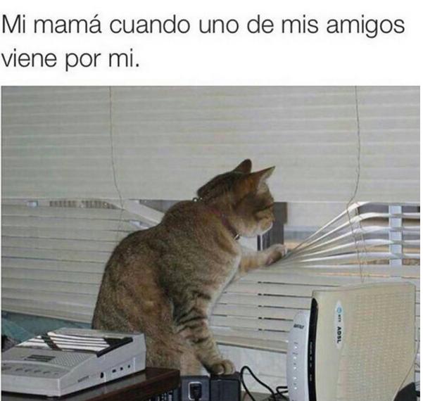 Divertidas situaciones que te recordarán a mamá