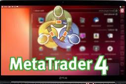 Cara Install MetaTrader 4 di Linux