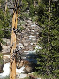 Die Dana Fork des Tuolumne River war der letzte zu durchquerende Fluss auf der High Route