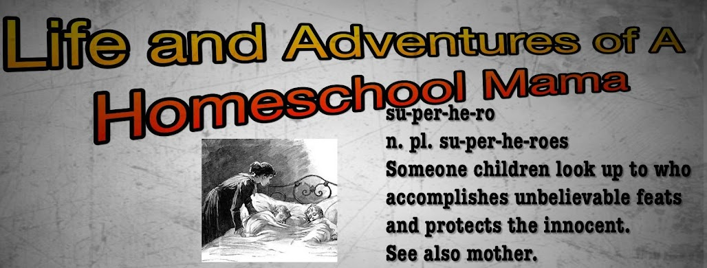Life And Adventures Of A Homeschool Mama Pit Of Fun