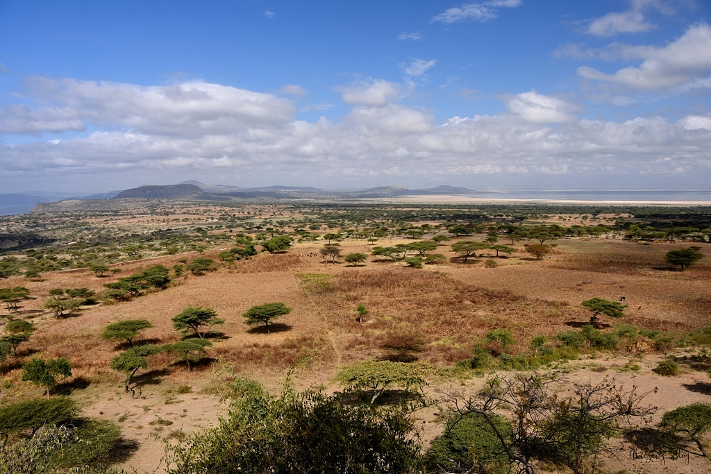 Podróż po Etiopii - cz. 8 - Park Narodowy Abijatta-Shalla.