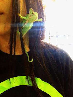 Fotografia de camaleon con pinta de enojado
