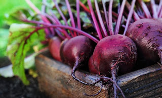 Buah dan Sayuran untuk Diet Menurunkan Berat Badan 3 - Buah Bit