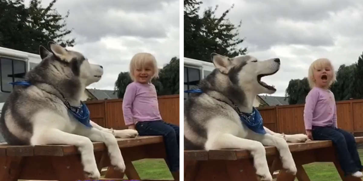 Adorable Conversation Of Little Girl And Dog That Developed A Language Of Their Own