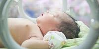 Apa Yang Harus Dilakukan Ketika Sang Bayi Lahir
