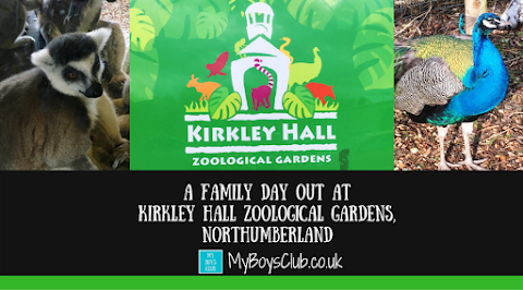 A Family Day Out at Kirkley Hall Zoological Gardens, Northumberland (REVIEW)