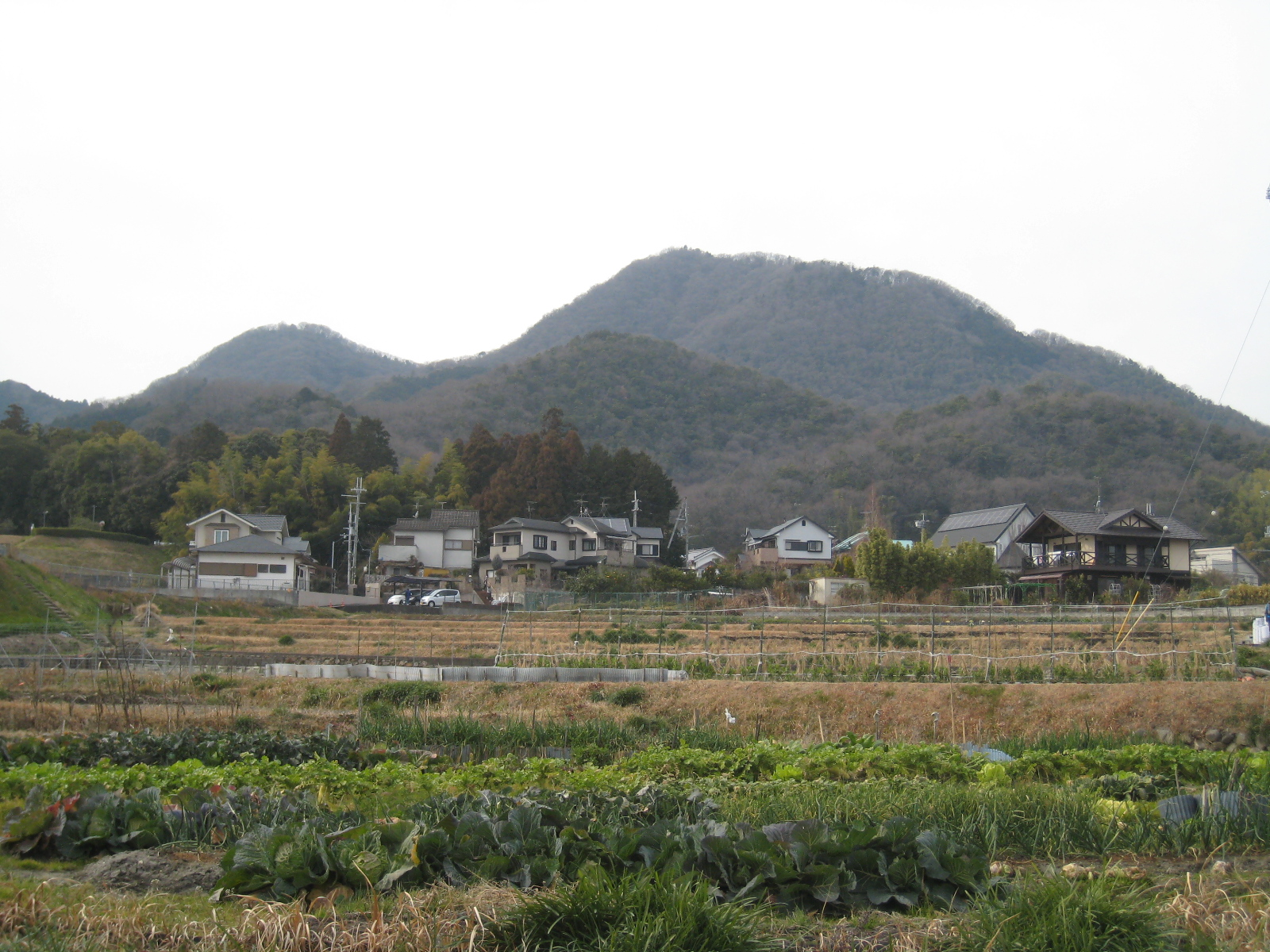 navigator 2016 fields in early spring at the foot of mt nijo nara photo ad blankestijn