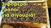 3 top χειρισμοί μελισσιού το φλεβάρη: Πως τσεκάρουμε αν έχουμε νοζεμίαση...