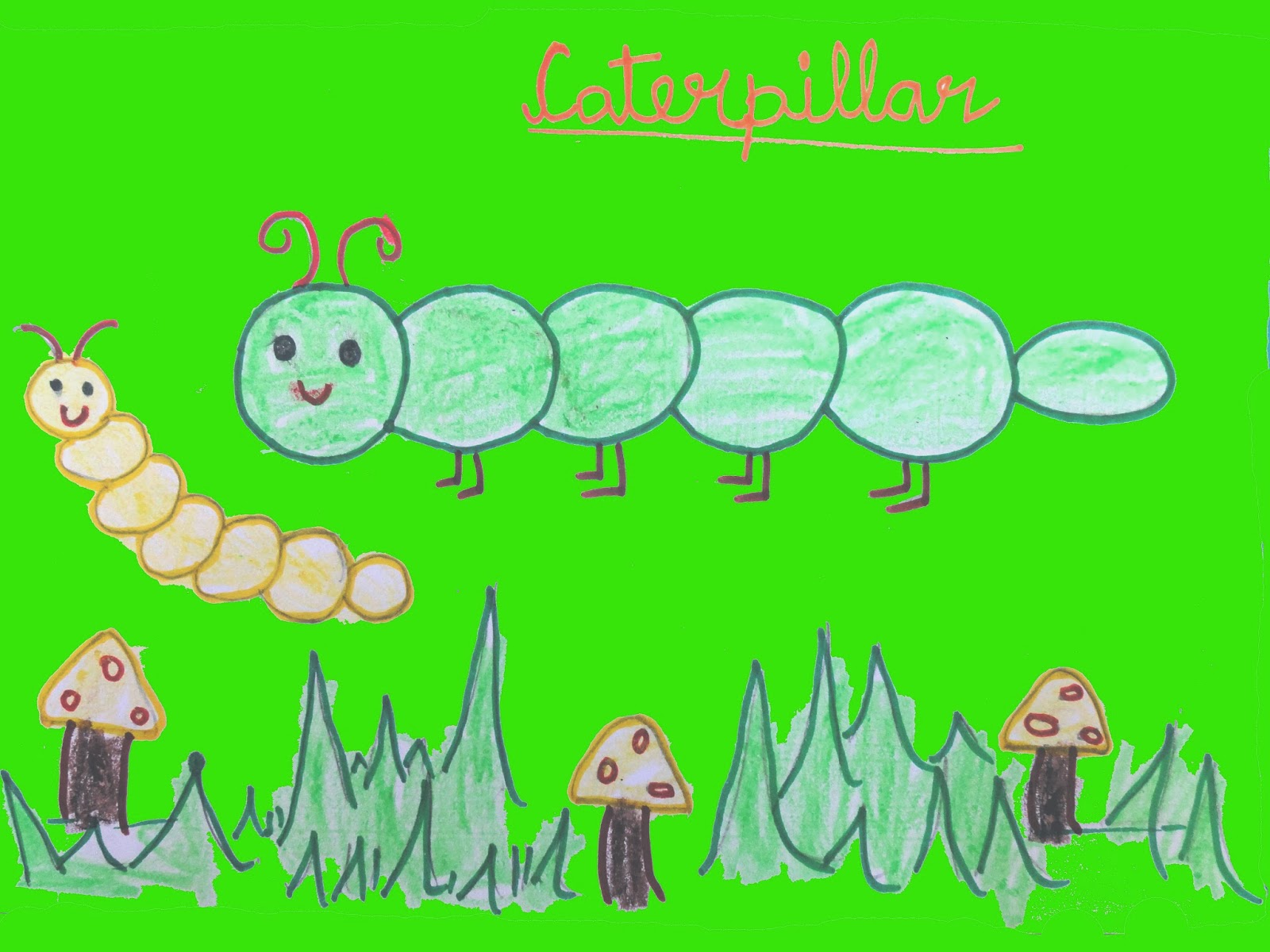 Caterpillar Drawing for Kids