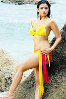 Bollywood Bikini ACTRESS in Bikini  Exclusive Galleries 023.jpg