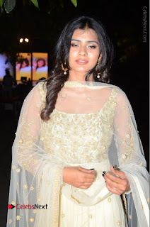 Tollywood Actress Hebah Patel Pos in Lehenga Choli at Nanna Nenu Na Boyfriends Audio Launch  0006.JPG