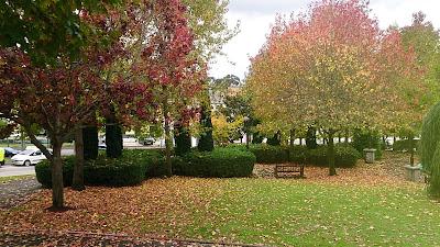 juegos al aire libre en otoño