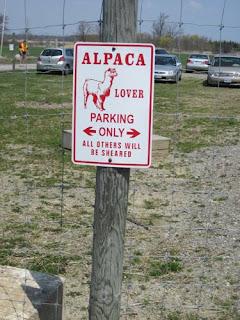 Alpaca lover parking.