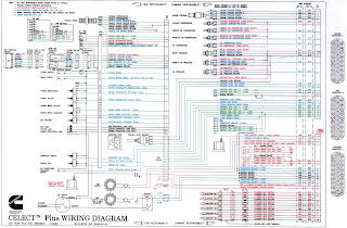 N14 Mins Alternator Wiring Diagram  N14 Ecm Pinout Diagram, N14 Oil