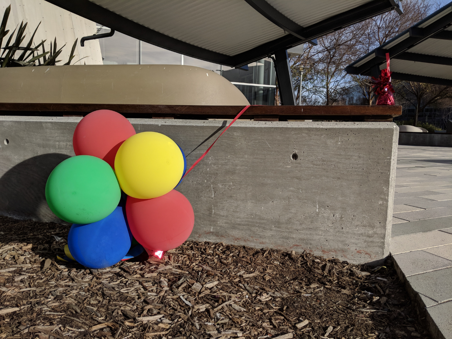 large round balloons outside on floor in front of a concrete wall