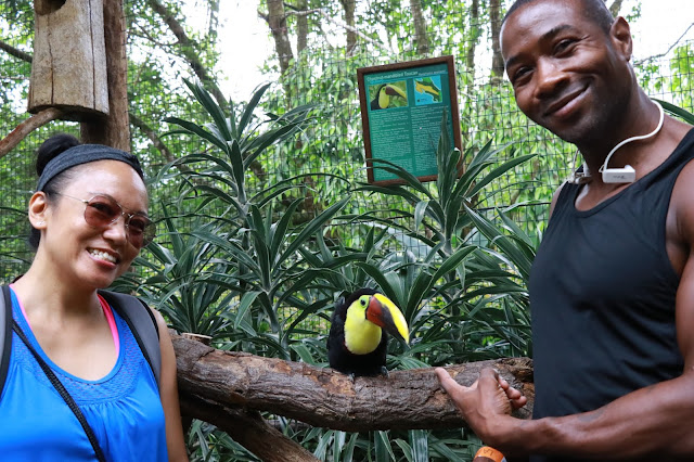 Playing with the toucan at the La Paz Waterfall Gardens