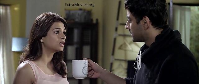 Zid 2014 hdrip 720p hindi movie free download