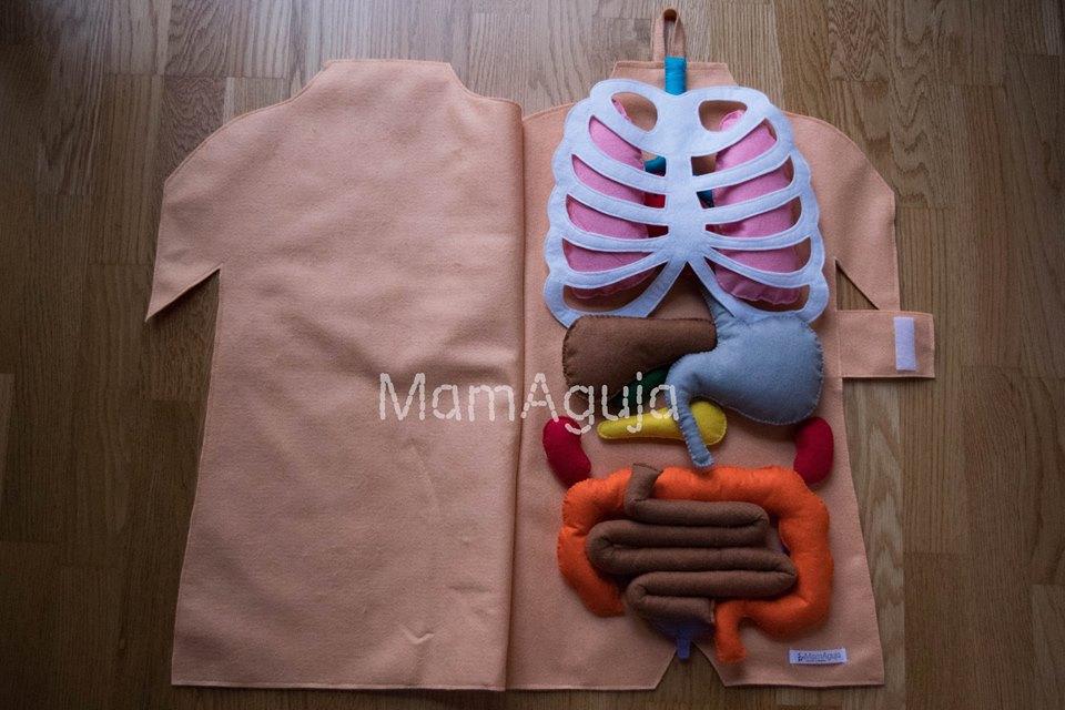 MamAguja: El Cuerpo Humano