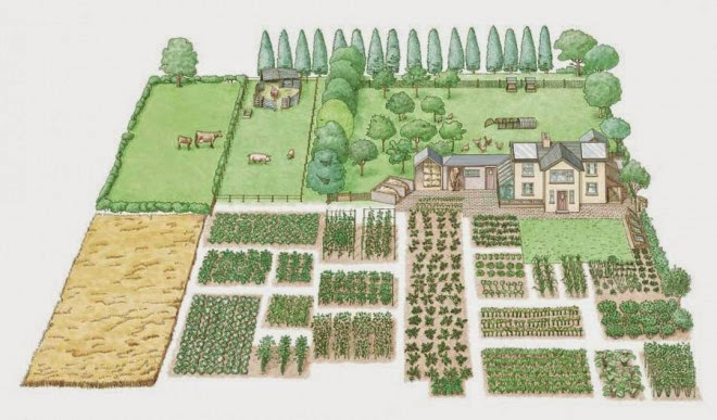How To Start A 1-Acre, Self-Sustaining Homestead