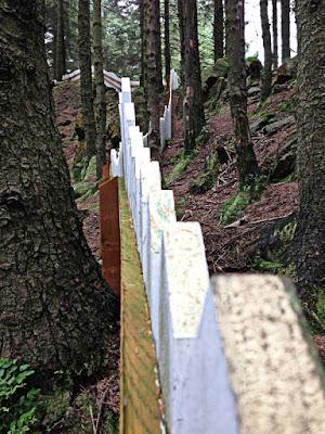 Picket Fence Wall Decor