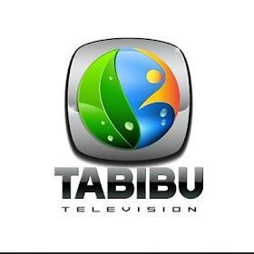 Job Opportunity at TABIBU TV, Business Development Manager