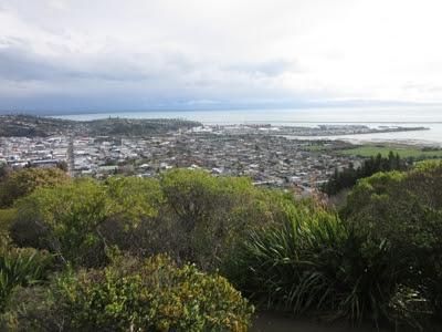 Centro de Nueva Zelanda, Nelson