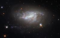 Spiral Galaxy NGC 5917