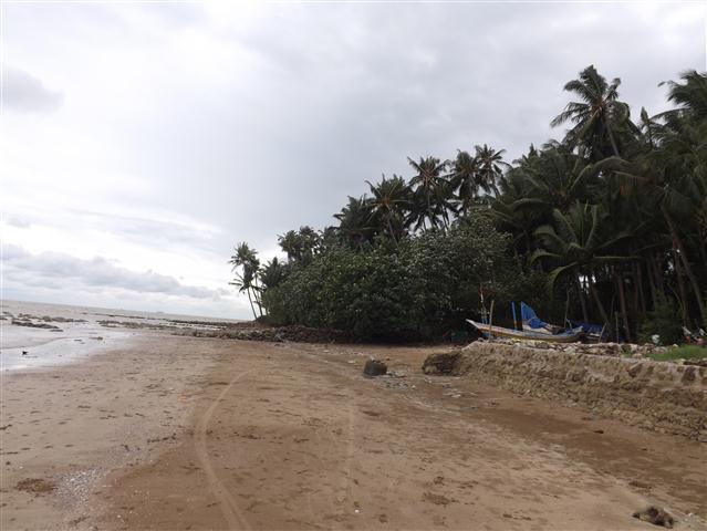 Wisata Pantai Kelapa Panyuran Tuban : Lokasi, Harga Tiket Masuk Terbaru 2019